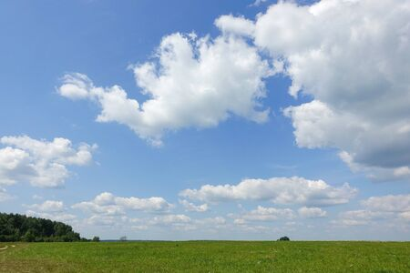 Blue sky and beautiful cloud with meadow tree. Plain landscape background for summer poster. The best view for holiday.