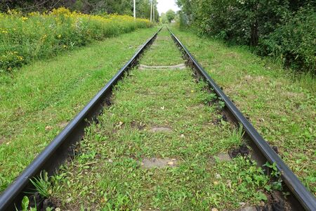 Old abandoned railway among the grass. Russia Stock Photo