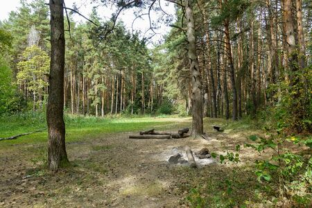 Picnic area in the forest. A fireplace and a place to relax. Russia. Archivio Fotografico
