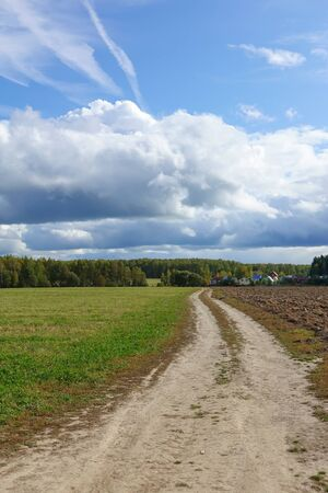 Green field, dirt road. sky with clouds. Beautiful landscape
