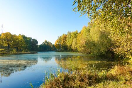 Autumn landscape of lake and bright trees Stock Photo