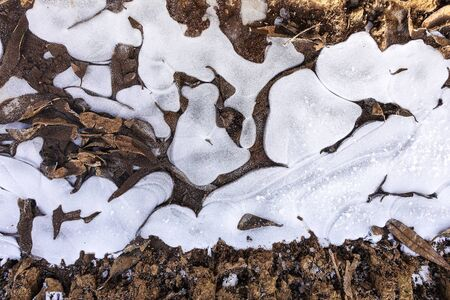 Broken ice on a country dirt road. Freezing puddle and fallen dried leaves. Abstract background