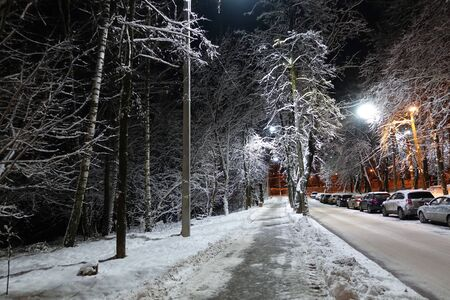 Night street in winter consecrated by lanterns. Paths, trees, cars covered in snow.