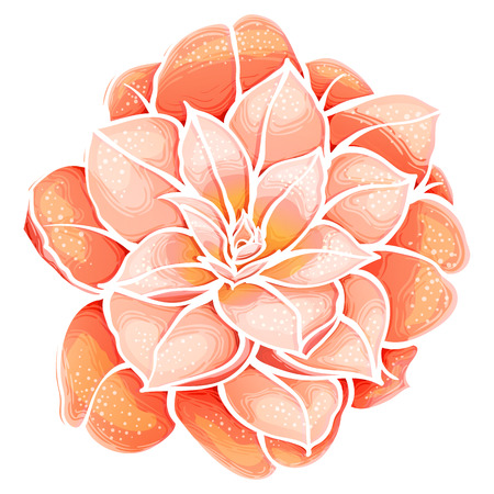 Exotic Orange flower. Camellia . Paradise flower. Banco de Imagens