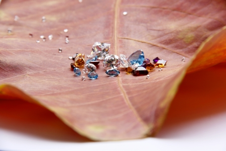 The Colorful Jewelry on the red leaf  photo