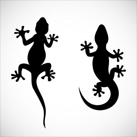 cling: Couple of lizard shadow. Illustration, EPS 10. Illustration