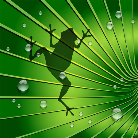 jungle jumping: Frog shadow is on Green Tone Leaf. Vector and Illustration, EPS 10 Illustration