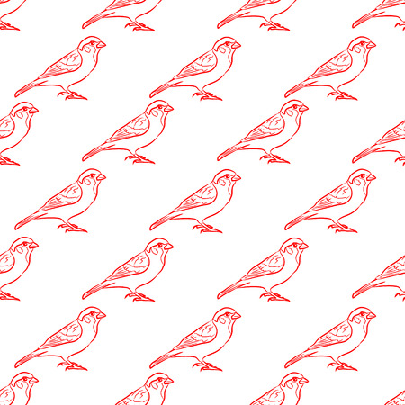 sparrow: pattern red sparrow