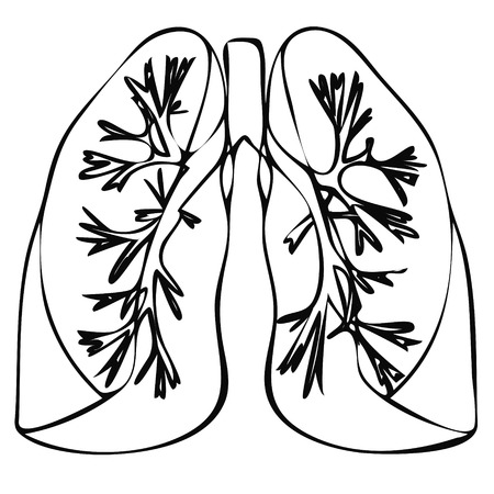 exhale: Human Lung anatomy diagram. Lung Illness respiratory cancer, Lung graphics. Lung flat style image