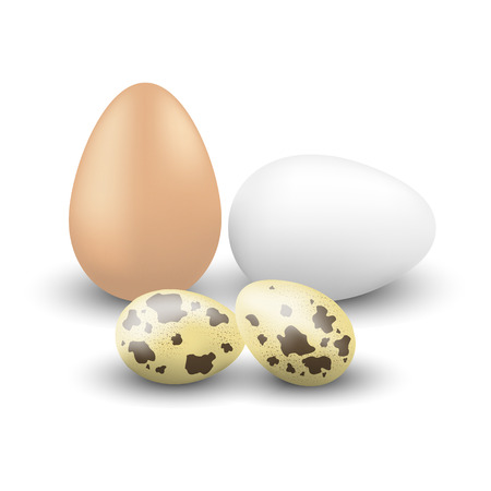 Chicken and quail eggs Imagens - 39370740