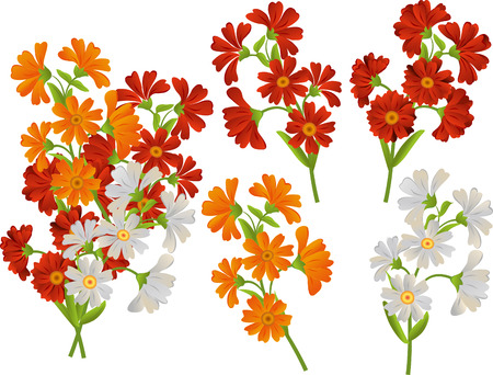 calendula: Vector set of flowers. Daisies asters calendula. Illustration