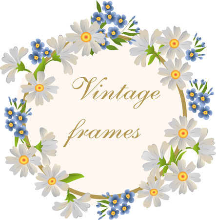 circle flower: Vector frame with daisies and forgetmenots.