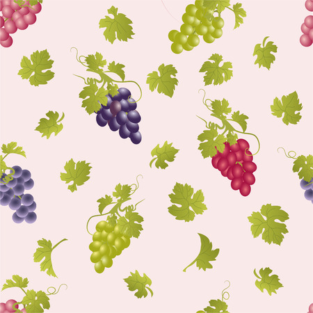 clusters: Vector repeating pattern with grape clusters.