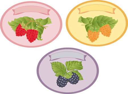 blackberry: Three vector labels with sprigs of raspberry and BlackBerry.