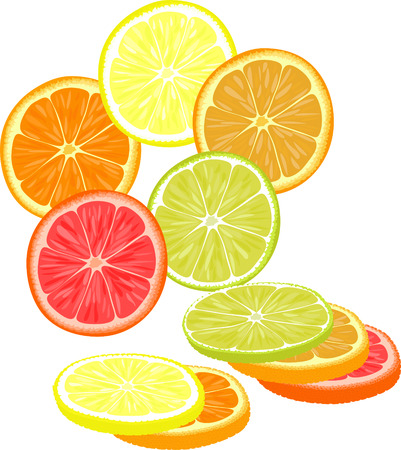 grapefruit: Slices of different citrus fruits. Orange, grapefruit, lemon, lime.