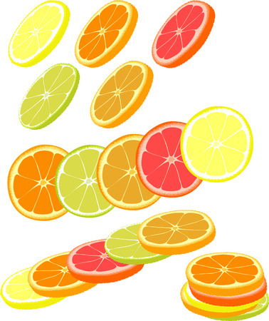 lemon lime: Slices of different citrus fruits. Orange, grapefruit, lemon, lime.