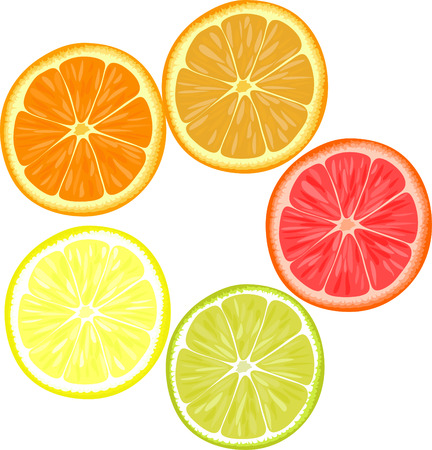 Rebanadas de diferentes frutas cítricas. Naranja, pomelo, limón, lima. Foto de archivo - 43128345