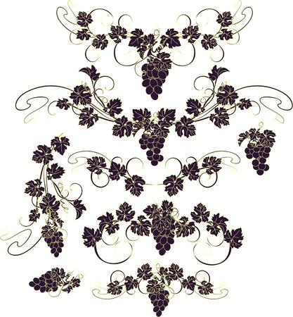 vid: Los elementos de diseño con racimos de uvas y las vides en el estilo vintage.