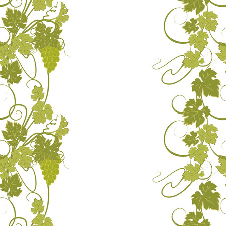 creeper: Seamless texture with vines and bunches of grapes. Illustration