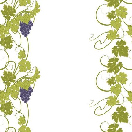 Seamless texture de vignes et de grappes de raisin. Banque d'images - 44299836