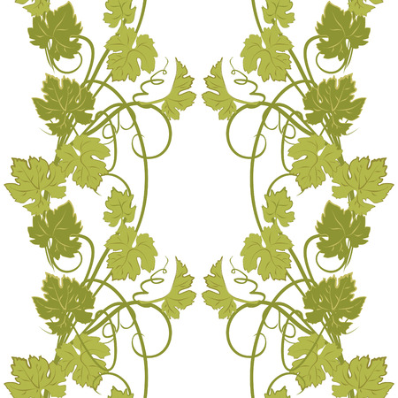 grape vines: Vector repeating pattern with vines in vintage style.