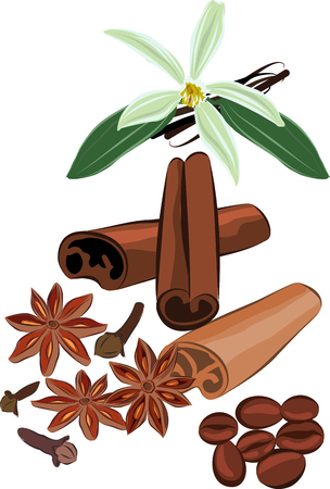 clous de girofle: Set of images of the cinnamon, vanilla, cloves, coffee, anise.