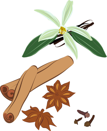 anise: Set of images of the cinnamon, vanilla, cloves, anise.