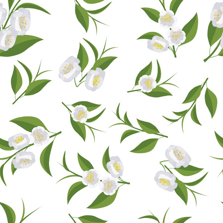 camellia: Seamless texture with leaves and flowers of tea. Camellia flowers. Illustration