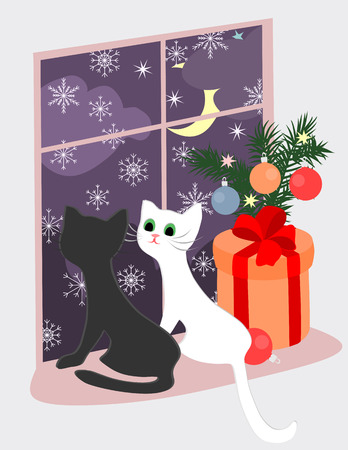 christmas theme: Christmas theme with kittens and the gift near the window.