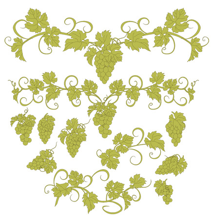 viticulture: Vector design elements in vintage style