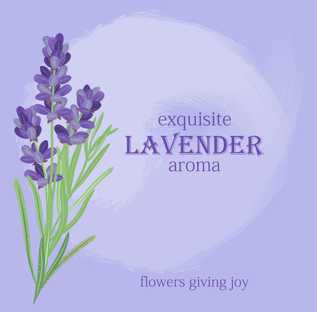 fragrant bouquet: The background for the text label of the packaging the card with lavender flowers.