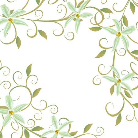 Vector illustration de la vigne de curling des orchidées de vanille. Banque d'images - 58383537