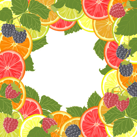 bramble: Background with citrus fruit, berries and leaves. Illustration