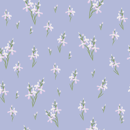 evening primrose: Seamless pattern with flowers Matthiola or evening primrose.