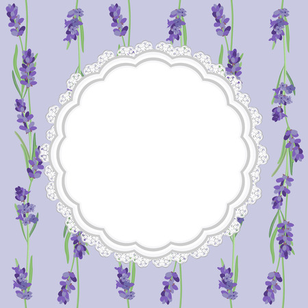 tissue paper: Lace tissue paper and sprigs of lavender card, label. Illustration
