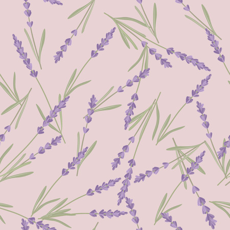 fragrant bouquet: Bright seamless background with sprigs of lavender.