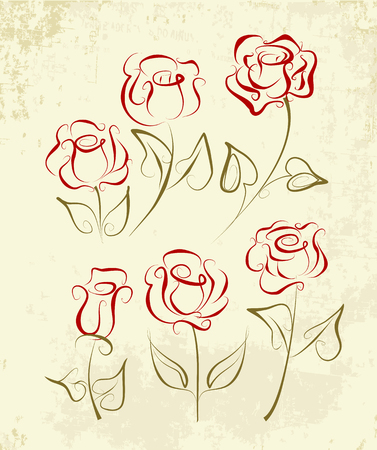 A set of rose drawn in pen and ink. Graphic roses isolated on old grunge paper.