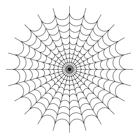 Round spider web photo
