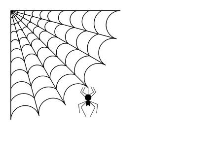 aracnidos: Ara�a con tela de ara�a