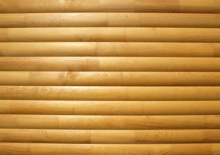 Timber background closeup    photo
