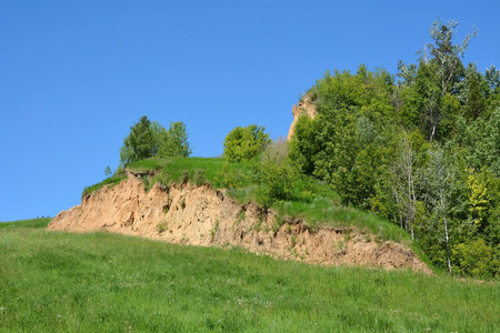 landslip: Trees at the slope Stock Photo