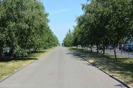 lenina: BARNAUL, RUSSIA- JUNE 25: Lenina avenue on June 25, 2014 in Barnaul. Lenina avenue is the central and biggest street in barnaul city