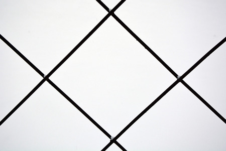 Metal grid. Picture can be used as a background photo