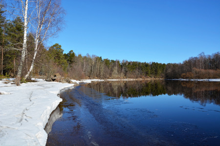 Spring river with different trees at the river shore photo