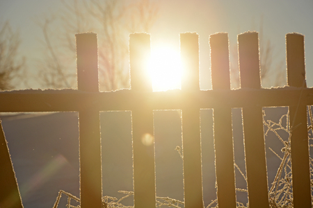 Sun, old wooden fence, winter forest in Russian backwoods