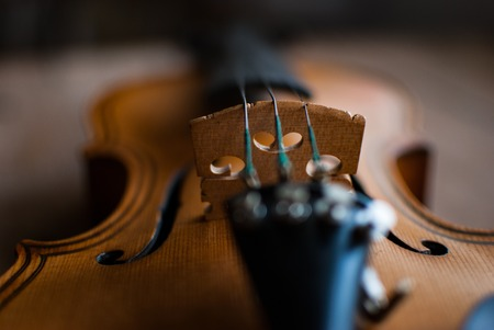 Close-ups of a violin 写真素材