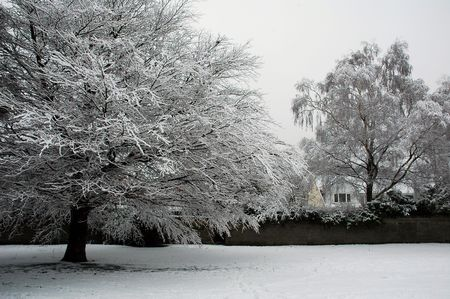 cardiff: Cardiff Bute park covered by snow, horizontally framed picture