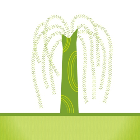 weeping: vector  artistic willow tree background Illustration
