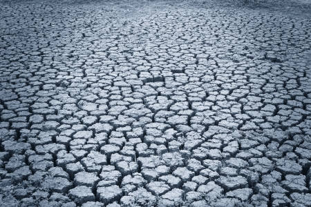 Dried Cracked Chaps Land Clay Earth In Dry Drought Season Stock Photo - 13836801