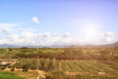 non urban: Farm of South China